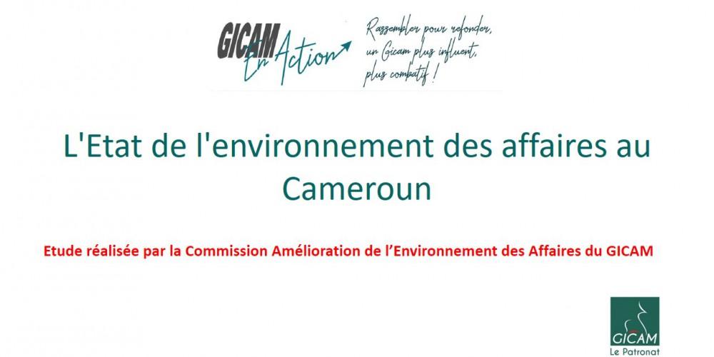 L'Etat de l'environnement des affaires au Cameroun