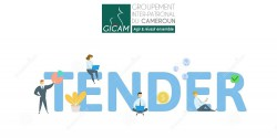 RECRUITMENT OF A CONSULTING FIRM TO ELABORATE THE ACCELARATOR PROGRAMME OF THE CDPME (GICAM)
